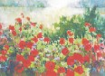 ''Poppy Series III'' by Carol Reeves, Oil, 30'' x 40'' Landscape